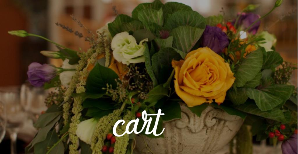 cart_01-1-1024x530