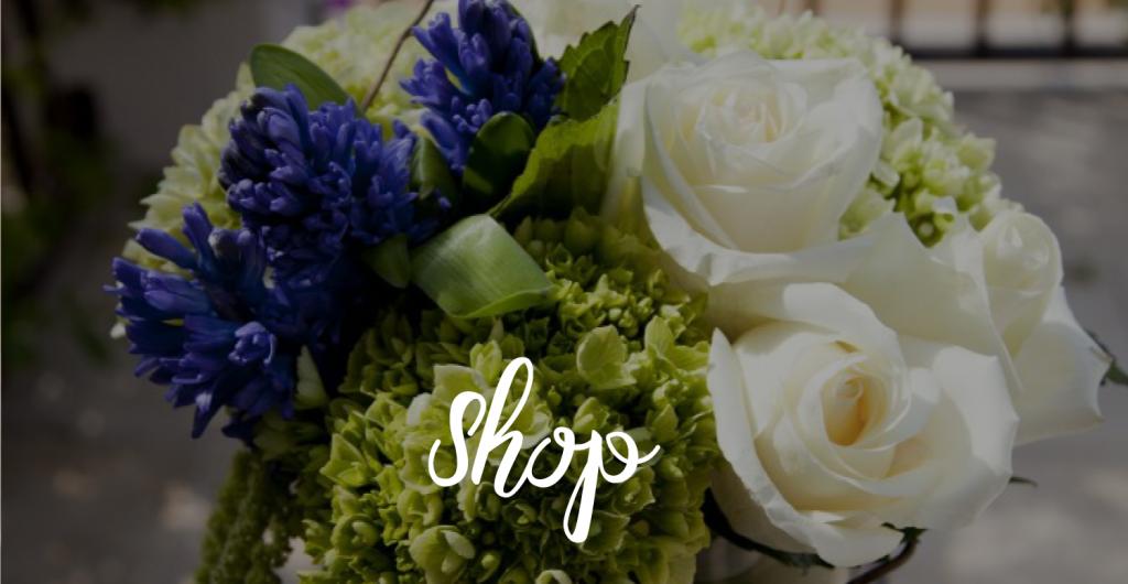 shop_02-1024x530